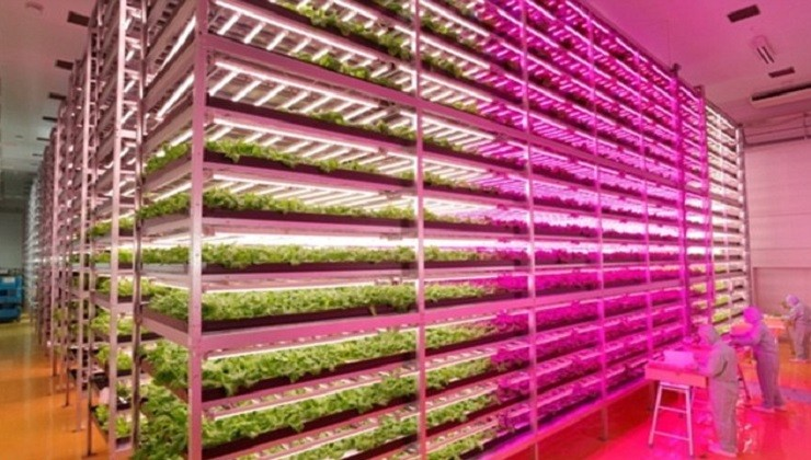 World's first Farmer-Free Robot Farm to open in 2017