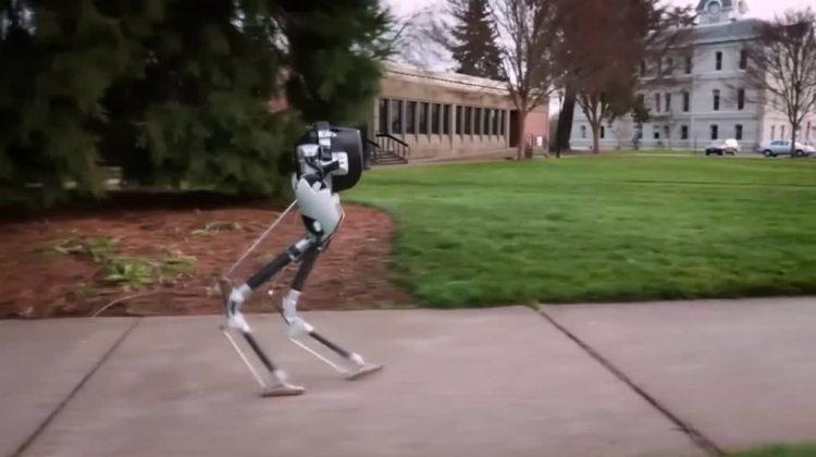"Two-legged Robot ""Cassie"" demonstrates complex locomotion"
