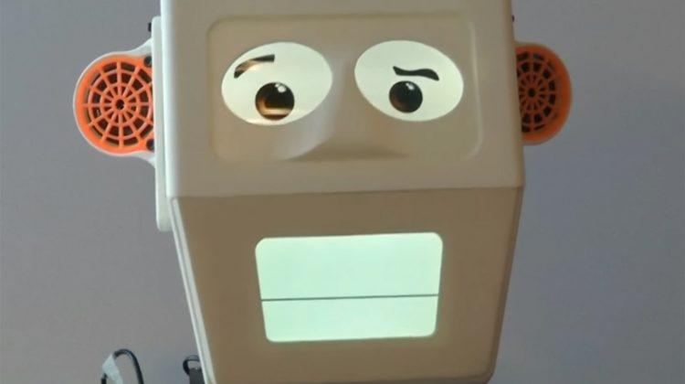 Dublin Engineers developing Robot helpers